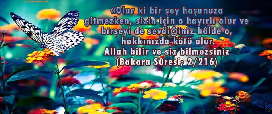 İŞİ ALLAH'A BIRAKMANIN KEYFİYETİ (TEFVİZ) MARIFETNAME