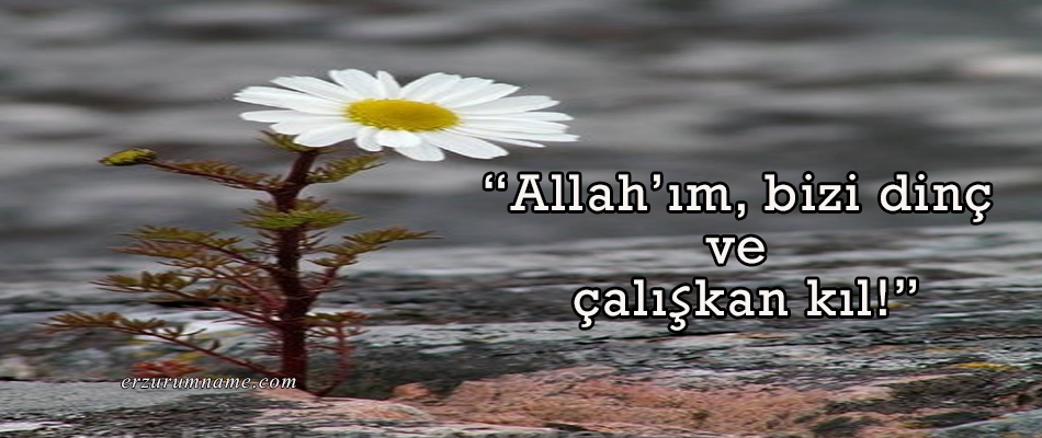 """""""Allah'ım, bizi dinç ve çalışkan kıl!"""""""